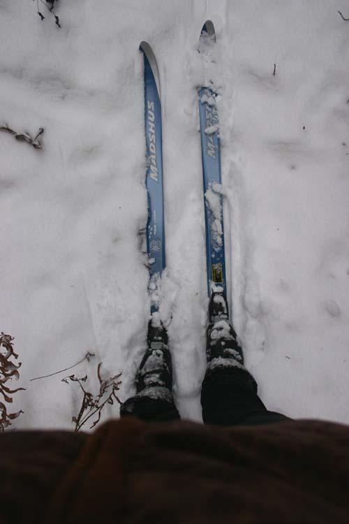 Ski_copy