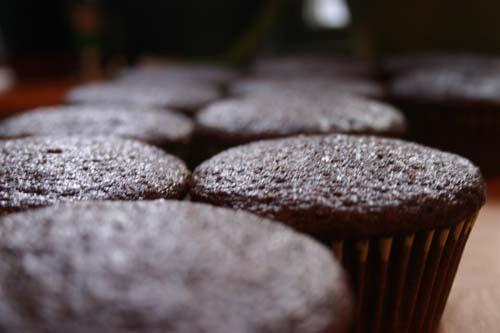 Cupcakes_copy