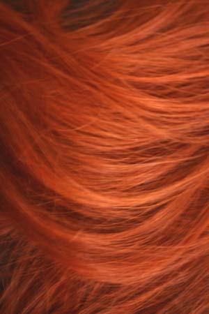 Hair_copy